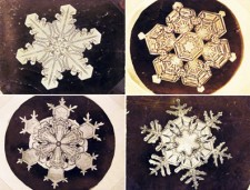 snowflakesimg-hp-main---snow-crystals_170825779436