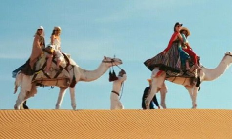 cameslSex-And-The-City-2-Camels