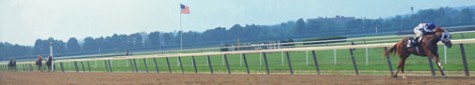 Secretariat_the_belmont